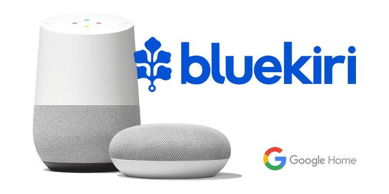 bluekiri google home